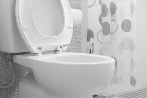 Hangend Toilet Plaatsen : Een moderne look aan uw wc is een hangend toilet van sanispecials